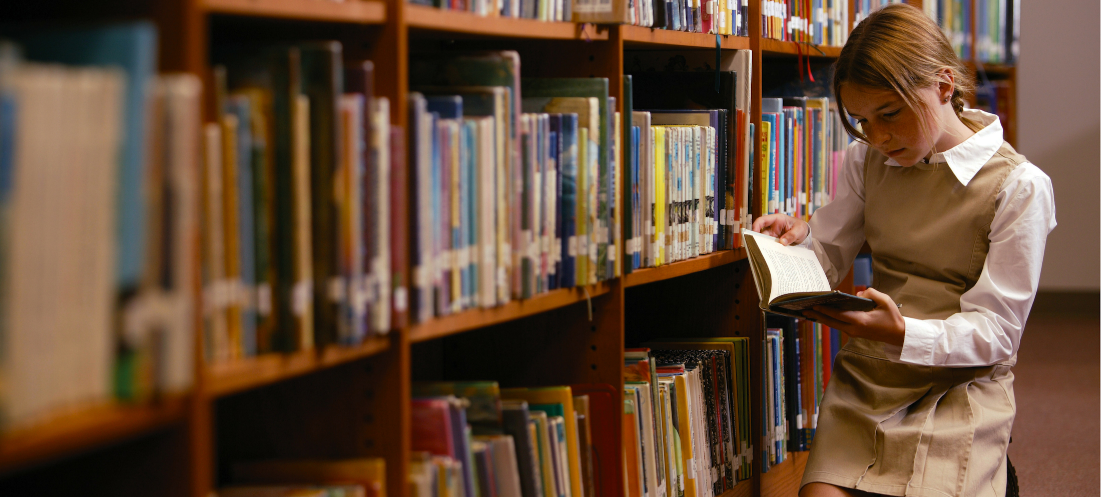 library page header image